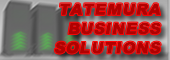 TATEMURA Business Solutions